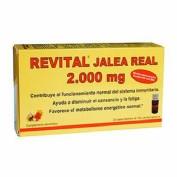 REVITAL JALEA REAL 2.000 MG