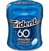 TRIDENT PEPPERMINT 60 MINUTES POT (BLAU)